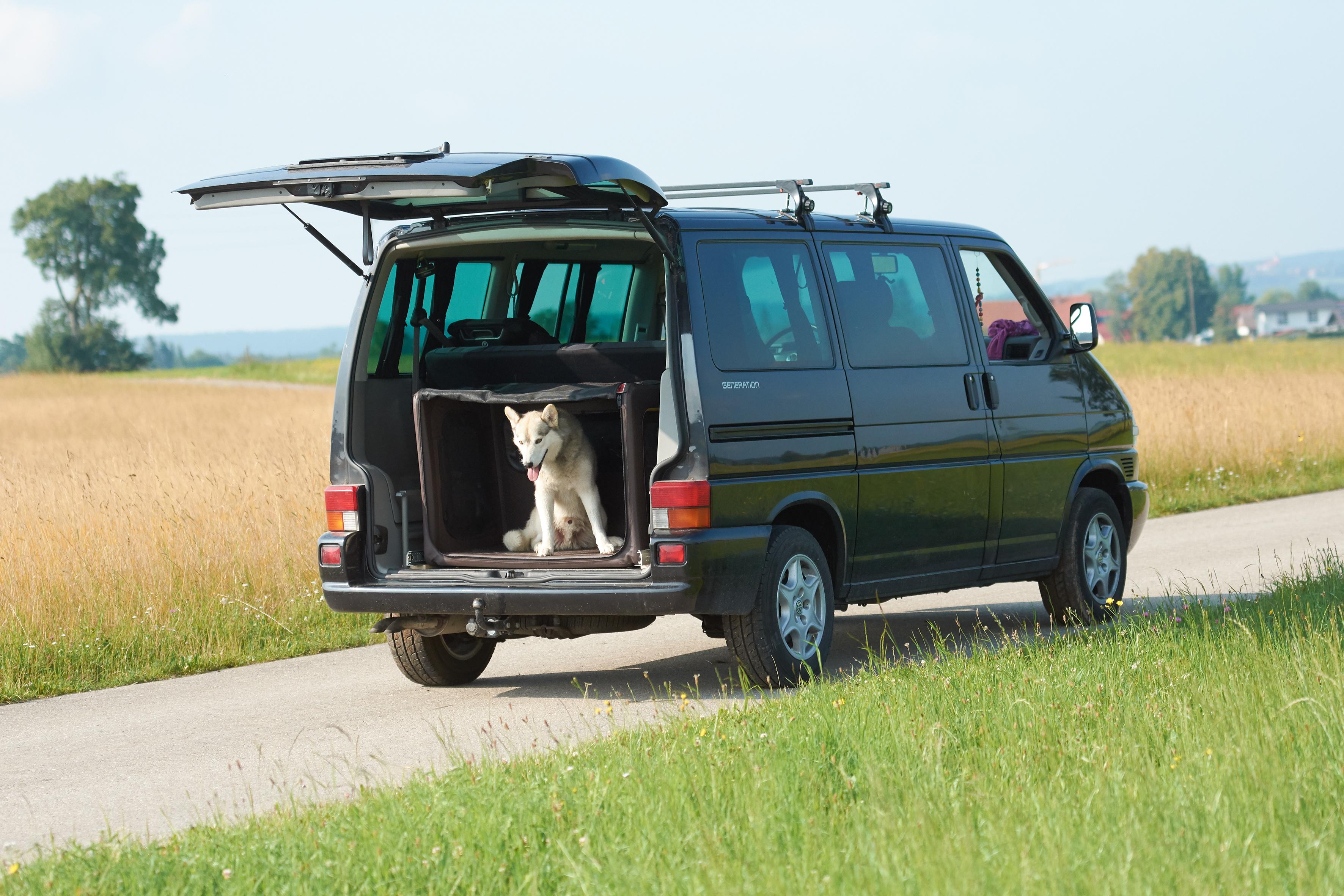 Perfekt für SUP mit Hund: die Tami Hundebox